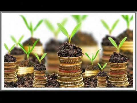 How to save Money fast? Money Saving Tips & Ideas