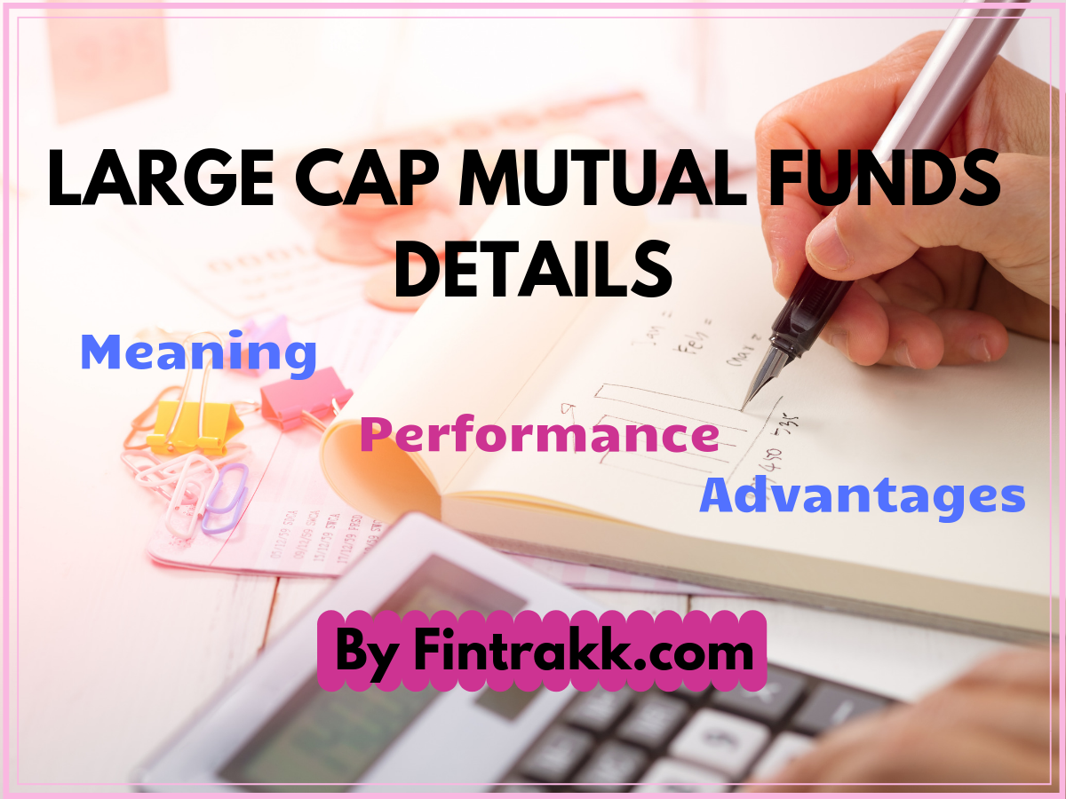 What are Large Cap Mutual Funds: Meaning & Performance