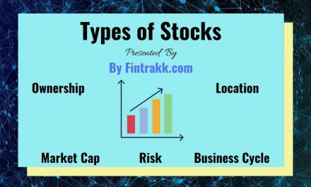 Different Types of Stocks Every Investor Should Know: Classification